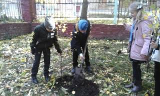 «Посади дерево - спаси планету!»