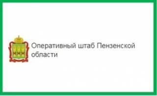 Меры социальной поддержки. Оперативный штаб Пензенской области.
